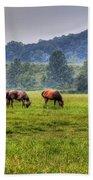 Horses In A Field 2 Beach Towel
