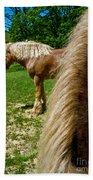 Horses In Meadow Beach Towel