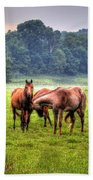 Horses Socialize Beach Towel