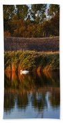 Horsey Mere On The Norfolk Broads On A Still Day In Autumn Beach Towel