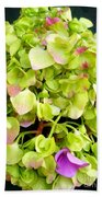 Hortensia With Touch Of Pink Beach Towel