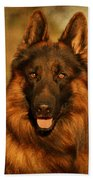 Hoss - German Shepherd Dog Beach Towel