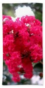 Hot Pink Crepe Myrtle Blossoms Beach Towel