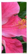 Hot Pink Hibiscus 2 Beach Towel