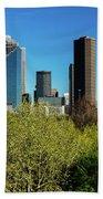 Houston Skyline, Houston, Texas Beach Sheet