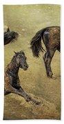How A Black Horse Turns Brown - Pryor Mustangs Beach Towel