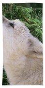 Howlling Arctic Wolf Pup Endangered Species Wildlife Rescue Beach Towel