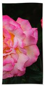 Huge Pink And White Rose...   # Beach Towel
