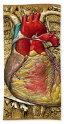 Human Heart Over Vintage Chart Of An Open Chest Cavity Beach Towel