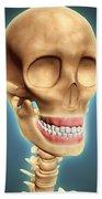 Human Skeleton Showing Teeth And Gums Beach Towel by Stocktrek Images
