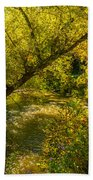 Humber River 5 Beach Towel