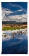 Humboldt Marshes In Spring Beach Towel