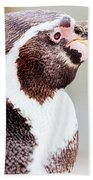 Humboldt Penguin Portrait Beach Towel