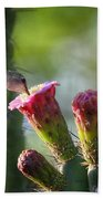 Hummingbird Breakfast Southwest Style  Beach Towel
