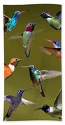 Hummingbird Collage Beach Towel