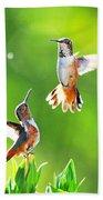 Hummingbird Dance  Beach Sheet