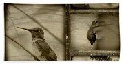 Hummingbird Family Portraits Beach Towel