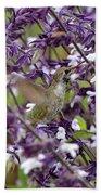 Hummingbird Flowers Beach Towel