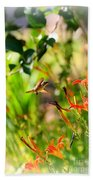 Hummingbird In The Daylilies Beach Towel