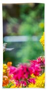 Hummingbird Moment Beach Towel