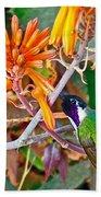 Hummingbird On Aloe In Living Desert In Palm Desert-california Beach Towel