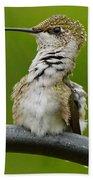 Hummingbird Stretching  Beach Sheet