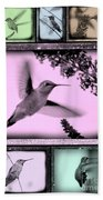 Hummingbirds In Old Frames Collage Beach Towel