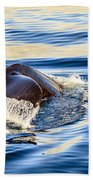 Humpback Whale Beach Towel