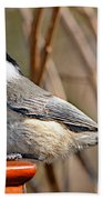 Hungry Chickadee  Beach Towel