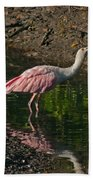 Hungry Pink Spoonbill Beach Towel