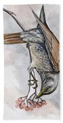 hungry Thrush 1 Beach Towel