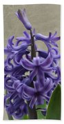 Hyacinth Purple Beach Towel