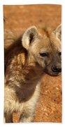 Hyena Beach Towel