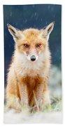 I Can't Stand The Rain  Fox In A Rain Shower Beach Sheet