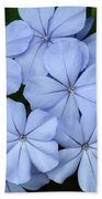 I Love Blue Flowers Beach Towel