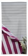 I Pledge Allegiance Beach Towel by Brian Wallace