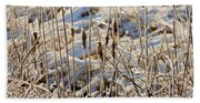 Ice Coated Bullrushes Beach Towel
