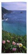 Ice Plants On Big Sur Coast Beach Towel
