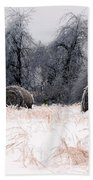 Ice Storm And Hay Bales In The Blue Rdige Mountains Beach Towel