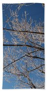 Ice Storm Branches Beach Towel