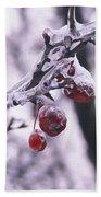 Iced Berries Beach Towel