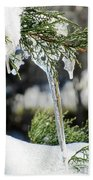 Icicles On Juniper Branch Beach Towel