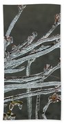 Icy Branch-7474 Beach Towel
