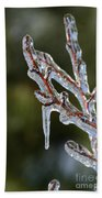Icy Branch-7498 Beach Towel