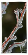 Icy Branch-7512 Beach Towel