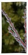 Icy Branch-7520 Beach Towel