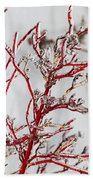 Icy Red Dogwood Beach Towel