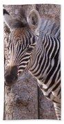 Idaho Falls - Tautphaus Park Zoo Beach Towel