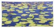 Idyllic Pond Beach Towel