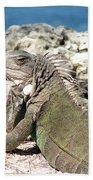 Iguana In The Sun Beach Towel